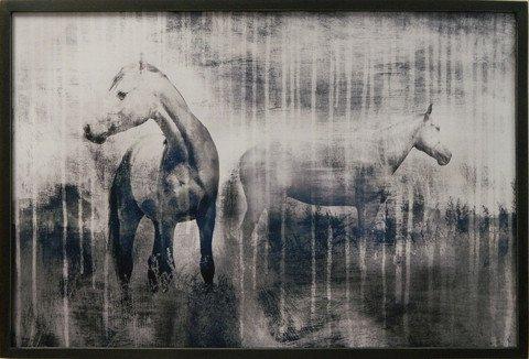 Grey Serenade