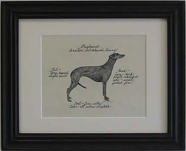 Greyhound, Black