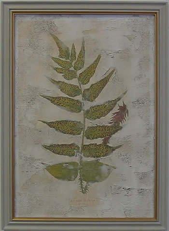 Fern Fresco III
