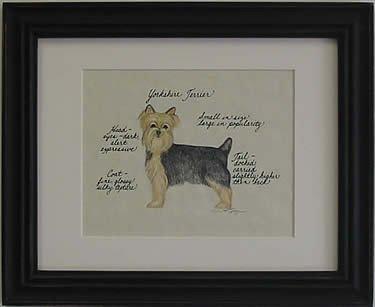 Yorkshire Terrier Puppy Cut