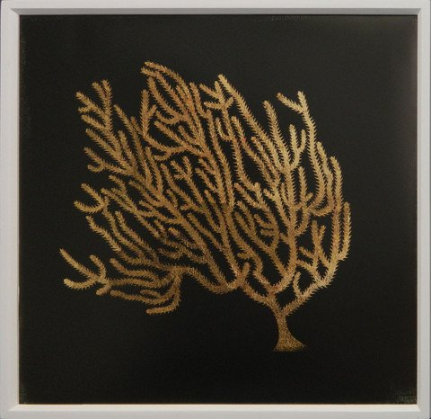 Gold Coral II