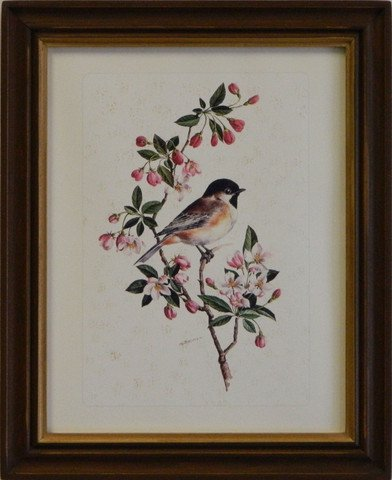 Vintage Songbird Reproduction I