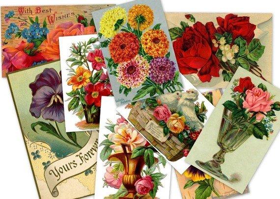 DVD 500 Victorian Vintage FLORAL ILLUSTRATIONS art images, pictures, scans