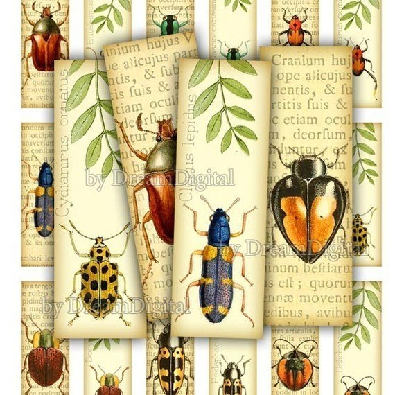 Insect Digital Collage Sheet, 1 x 3 inch, Bugs, Digital , Printable Insects