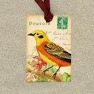 Printable Tag, Bird Gift Tag, Postcard Background, Digital Clip Art