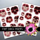 Pretty Pansy Digital print Sticker Sheet-print StickersingAltered ArtCards