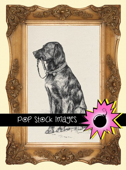 Dog Digital Image Transfer-Man's Best Friend-Dog print for TotesLinens Shirts print Dog Leash