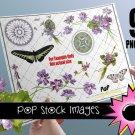 VINTAGE VIOLETS Digital Img.-Digital Scrapbooking Img.-African Violets-print Digital Img.