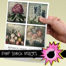 Vintage Botanical Print Coasters-3.8' square Digital Img.-Img.Supply List