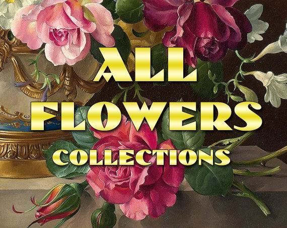 FLOWERS Collections with 27 300 vintage print