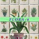 FLORA-6 275 vintage print