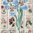 FLOWERS-58 262 vintage print