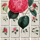 CAMELLIAS-1 flowers 101 vintage print