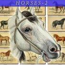 HORSES-2 69 vintage print