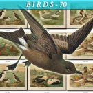 BIRDS-70 51 vintage print