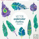 VECTOR Watercolor Feathers Clip Art-HPainted FeathersPeacock FeathersWatercolor Feathers Png