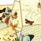 Butterfly Illustrations, Digital , Collage Sheet, Tags, Digital Background