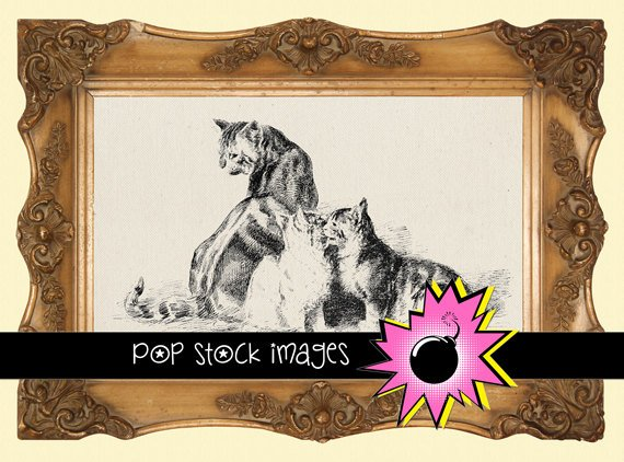 Cat Trio Digital Image Transfer-Cats Kittens print for TotesLinens Shirts print Cat Trio