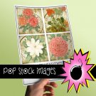 VINTAGE BOTANICALS Coaster Kit Set Two-3.8' Square Digital Img. Coasters-Img.Supply List