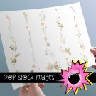 Watercolor Floral Image Collection Volume 2 - INDIVIDUAL vintage print