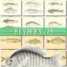 FISHES-15-bw 220 black-, -white vintage print