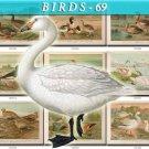 BIRDS-69 55 vintage print