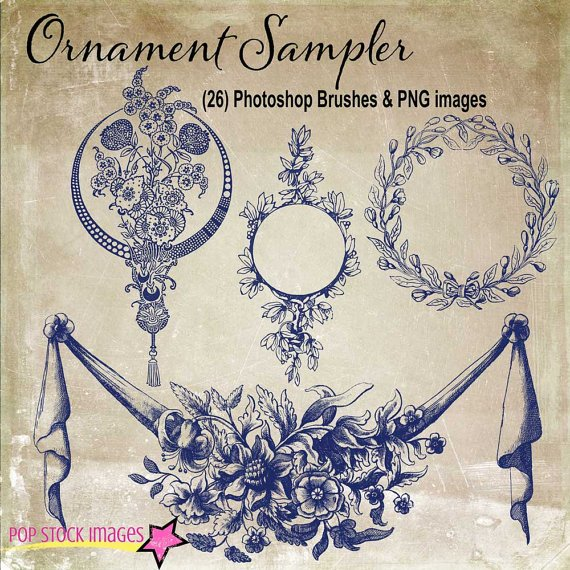Decorative Frames Ornaments Brushes