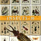 INSECTS-10 222 vintage print