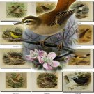 BIRDS-51 56 vintage print