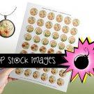 1 Inch Circles Paris Floral Collage Sheet-print for PendantsMagnets & Charms