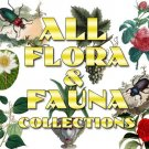 FLORA 1-10 ,  Flora & FAUNA 1-13 Collections with 6900 vintage print