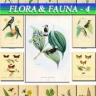 FLORA ,  FAUNA-4 247 vintage print