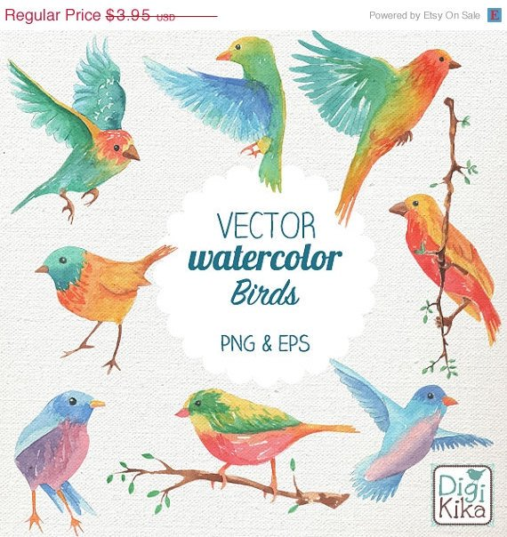 VECTOR Watercolor Birds Clip Art-HPainted BirdsVector Birds Clipart SetWatercolor Birds Png -Instan