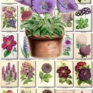 PURPLE-1 FLOWERS 280 vintage print