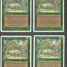 Carnivorous Plant x4 - NM - 4th Edition - Magic the Gathering