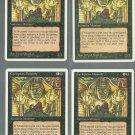 Cyclopean Mummy x4 - NM - 4th Edition - Magic the Gathering