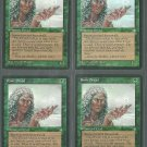Rime Dryad x4 Good Ice Age Magic the Gathering