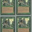 Juniper Order Druid x4 - Good - Ice Age - Magic the Gathering