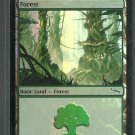 Forest - NM - Foil - Mirrodin - Magic the Gathering
