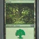 Forest - NM - Foil - Magic 2013 - Magic the Gathering