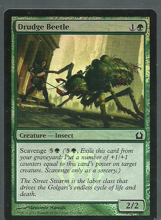 Drudge Beetle NM Foil Return to Ravnica Magic the Gathering