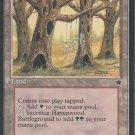 Havenwood Battleground - VG - Fallen Empires - Magic the Gathering