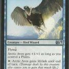 Arctic Aven - NM - Magic 2013 - Magic the Gathering