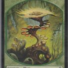 Plant - NM - Worldwake - Magic the Gathering