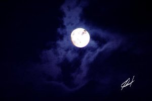Once in a Blue Moon JBURTPHOTOS Original 8x10 Photographic Print