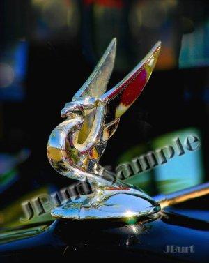 JBURTPHOTOS Original 8x10 Print - Winged Dragon Gryphon Radiator Cap Hood Ornament