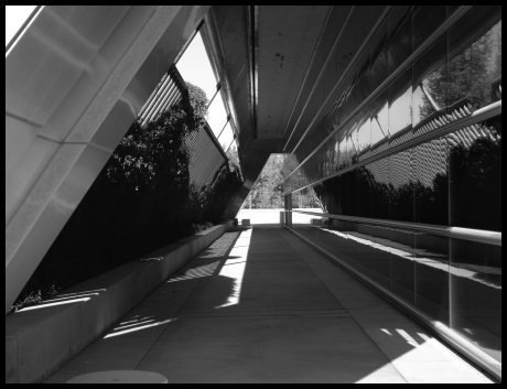 JBURTPHOTOS Original 8x10 B&W Photographic Print Fresno California City Hall Corridor