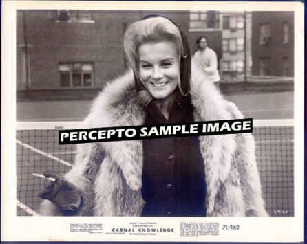 CARNAL KNOWLEDGE  ~ Orig '71 Movie Photo ~ ANN MARGRET