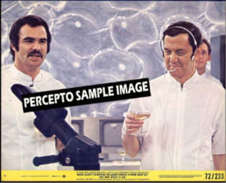EVERYTHING YOU ALWAYS WANTED TO KNOW ABOUT SEX  ~  '72 Movie Photo ~ TONY RANDALL / BURT REYNOLDS