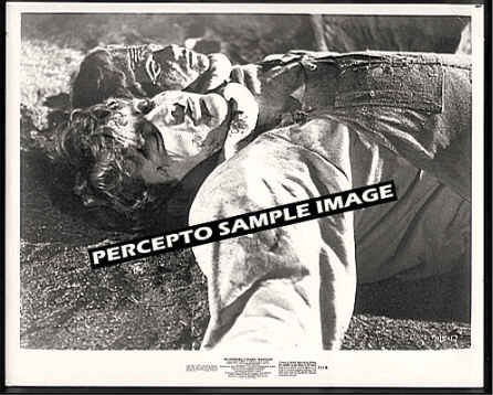 INCREDIBLE 2-HEADED TRANSPLANT ~ Orig '71 CREATURE MOVIE PHOTO ~ AIP HORROR